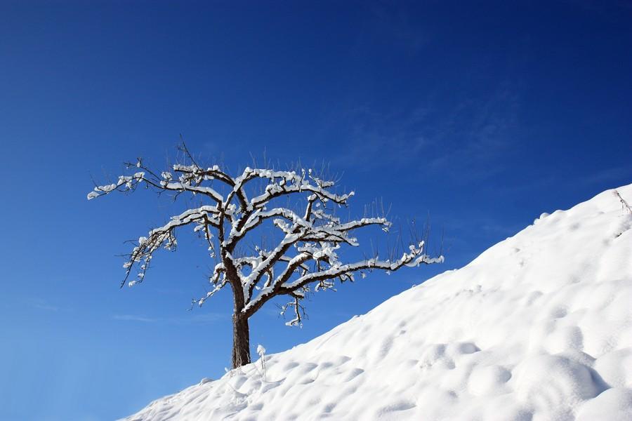 Winterkontraste