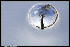 Winterkugelspiegelung - Ball reflexions in wintertime