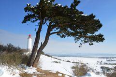 Winterland Hiddensee  mi Leuchtturm Dornbusch