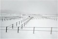 Winterlandschaft  6