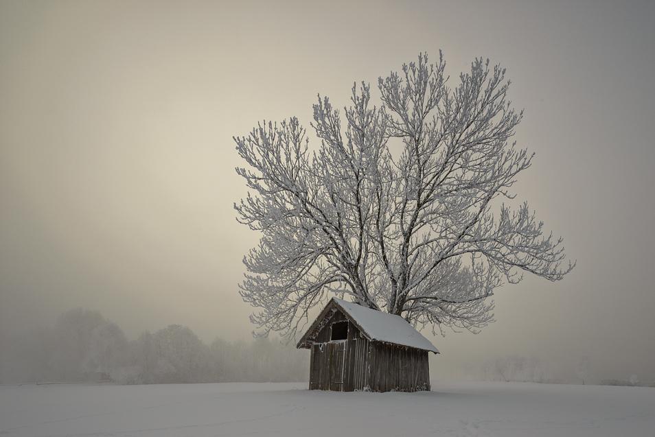 Winter|Landschaft