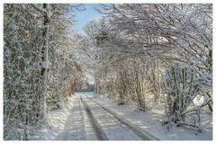 Winterlandschaft !