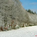 """Winterlandschaft: """"Adieu"""", der letzte Schnee, in der Eifel....."""