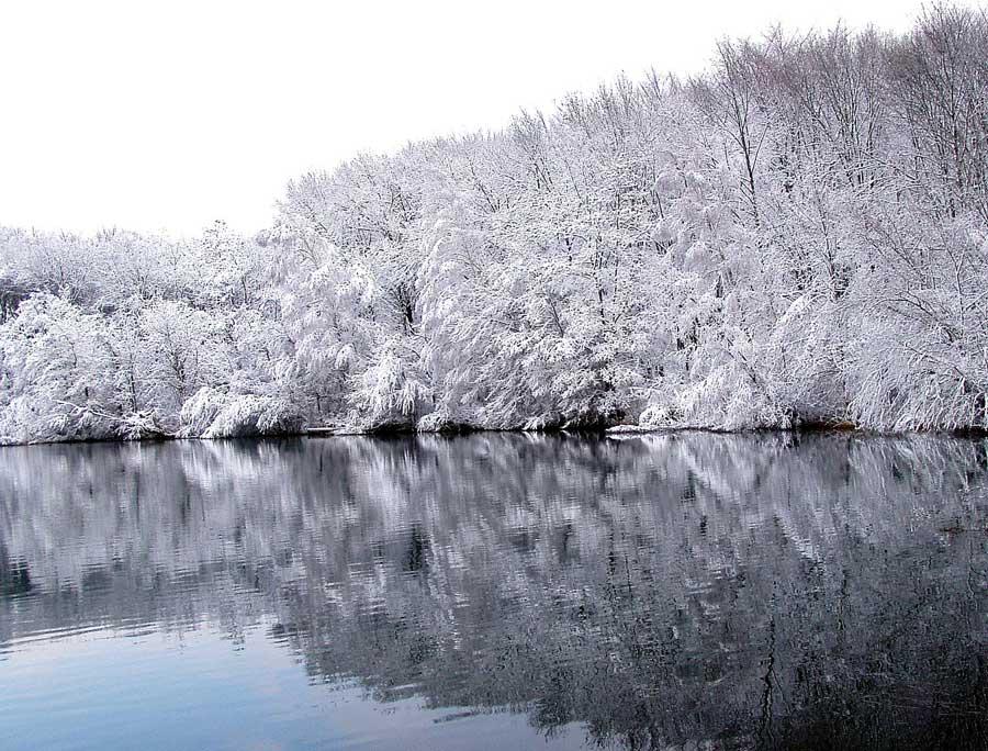 Winterlandschaft am See