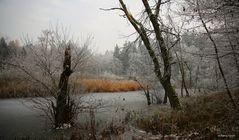 Winterlandschaft am Weiher