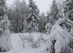 Winterlandschaft auf dem ...