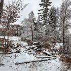 Winterlandschaft auf dem Plesch! (3)