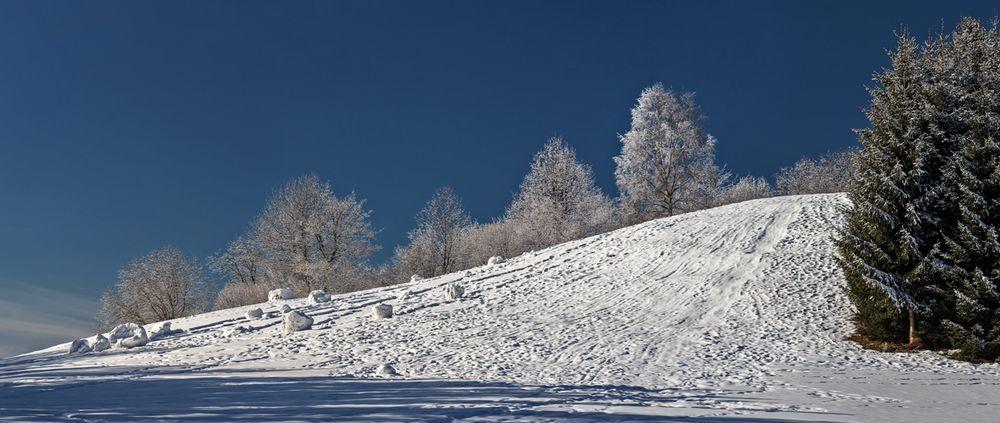 Winterlandschaft auf dem Plesch! (4)