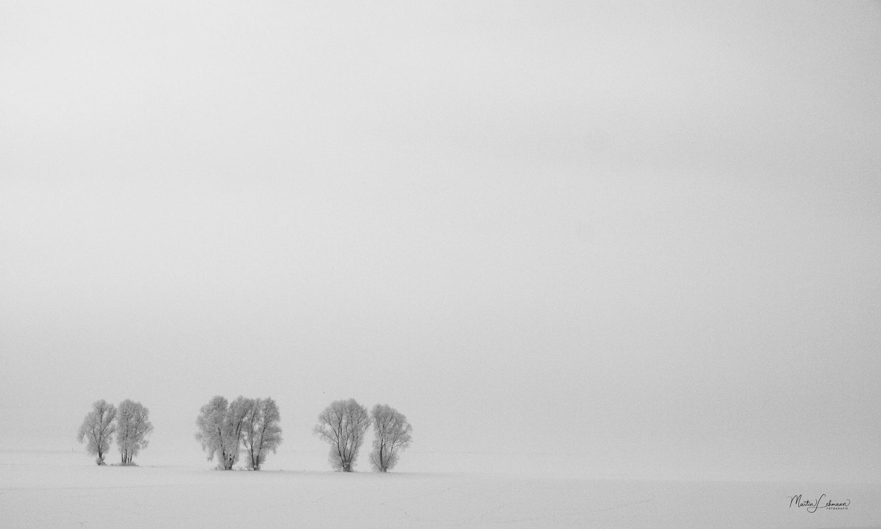 Winterlandschaft bei Esbeck