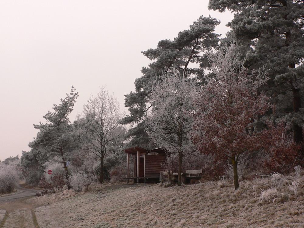 Winterlandschaft bei Herborn