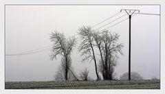 Winterlandschaft bei Korbach