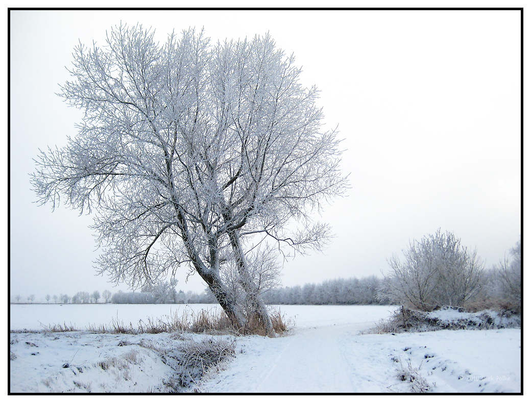 Winterlandschaft bei Otterndorf