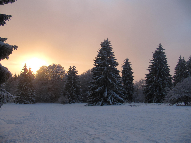 Winterlandschaft beim Sonnenuntergang