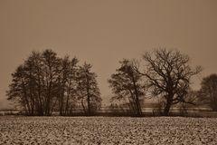Winterlandschaft einmal anders