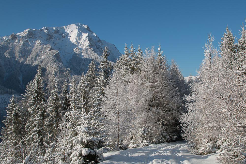winterlandschaft foto  bild  jahreszeiten winter