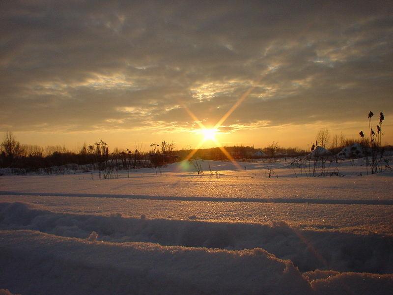 Winterlandschaft im Land Brandenburg