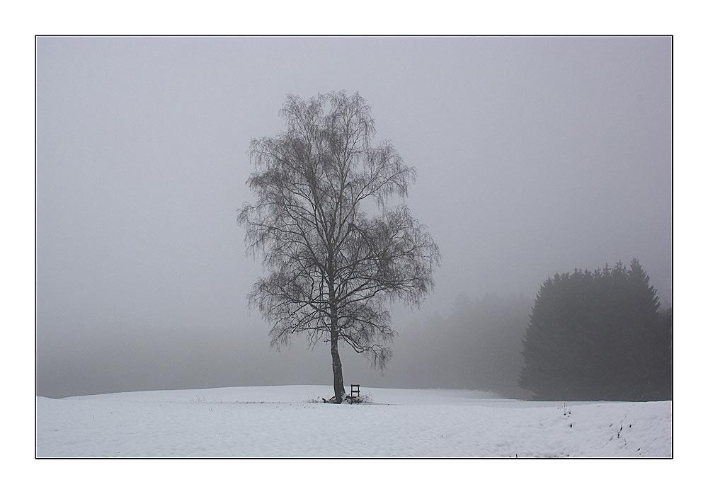 ......Winterlandschaft im Nebel......