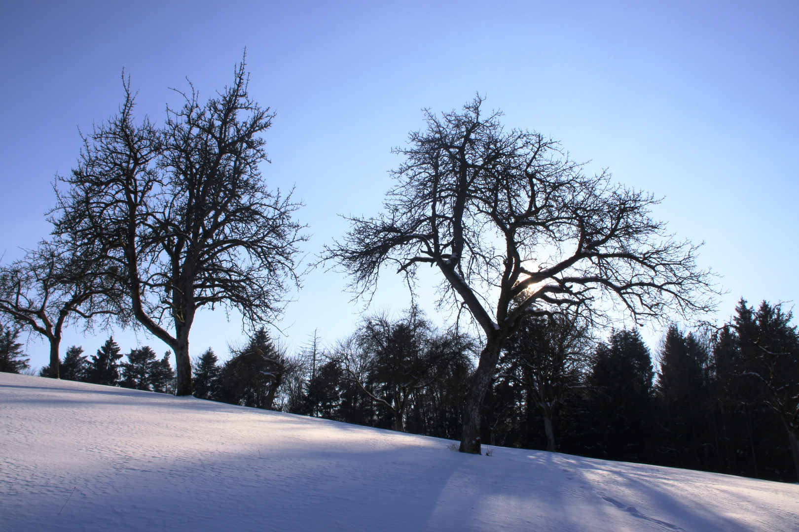 Winterlandschaft in Murrhardt