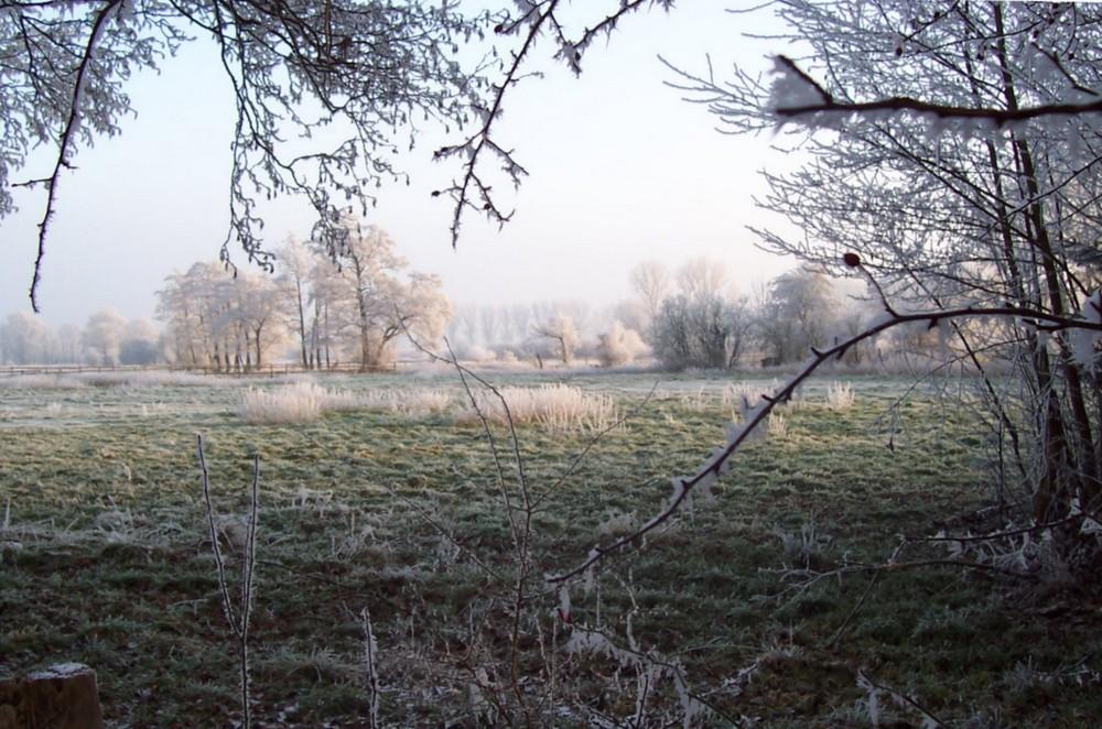 Winterlandschaft in Norddeutschland (6)