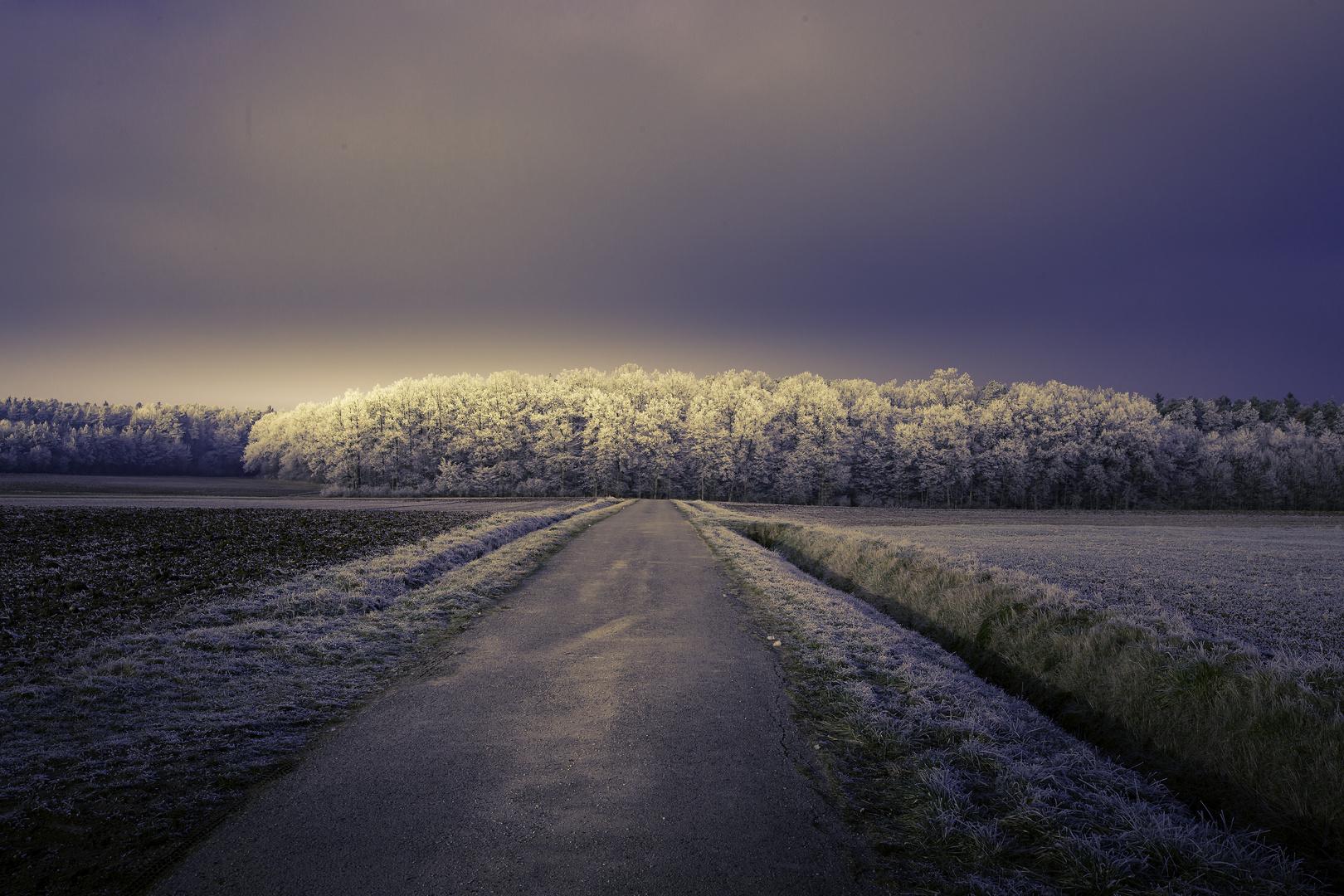 Winterlandschaft mit Lichtstimmung