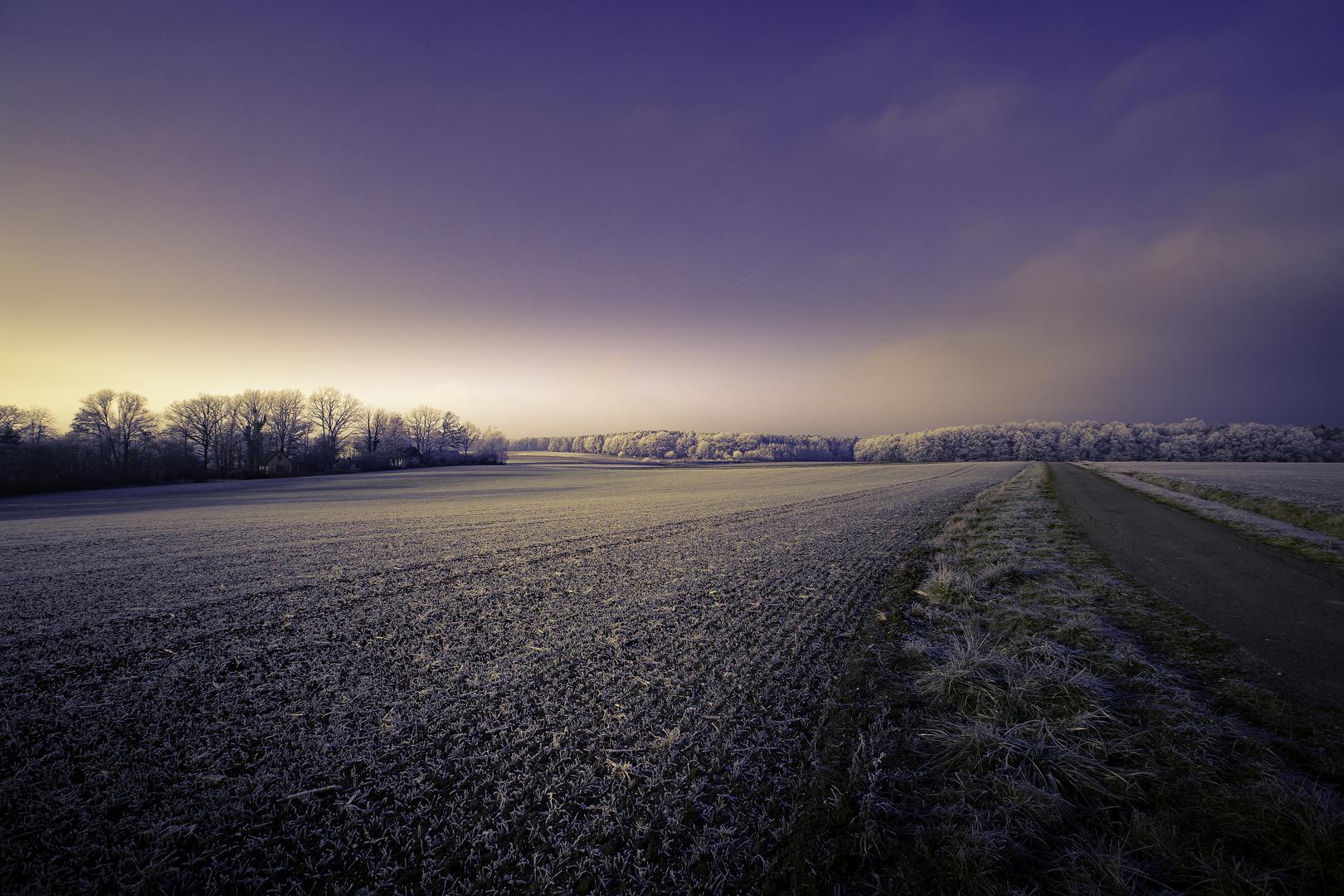 Winterlandschaft mit Lichtstimmung2