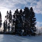 Winterlandschaft Panorama