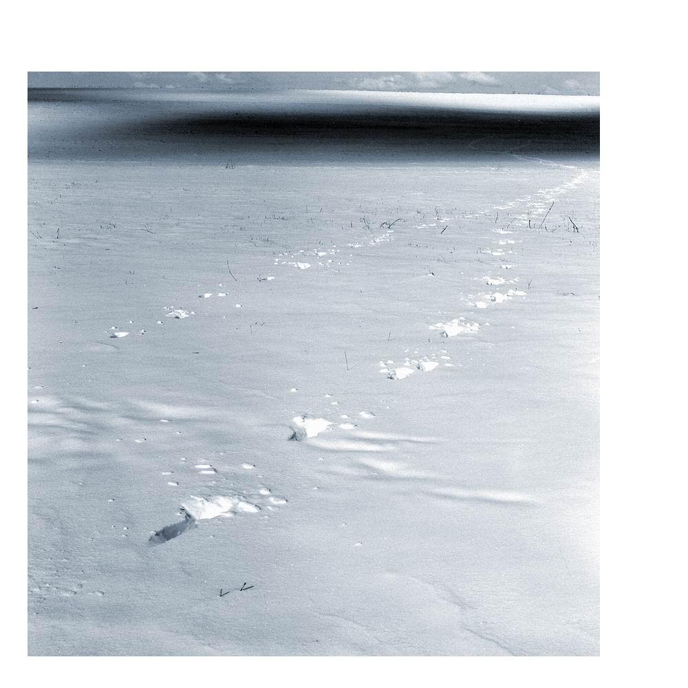 Winterlandschaft V