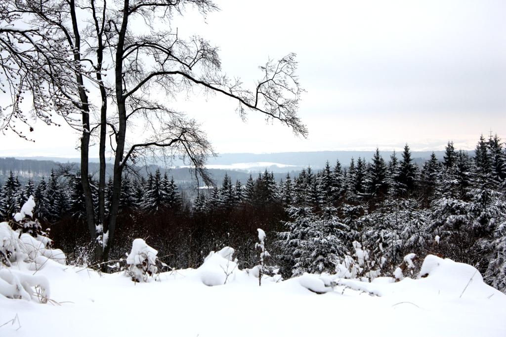 Winterlandschaft Versuch 1