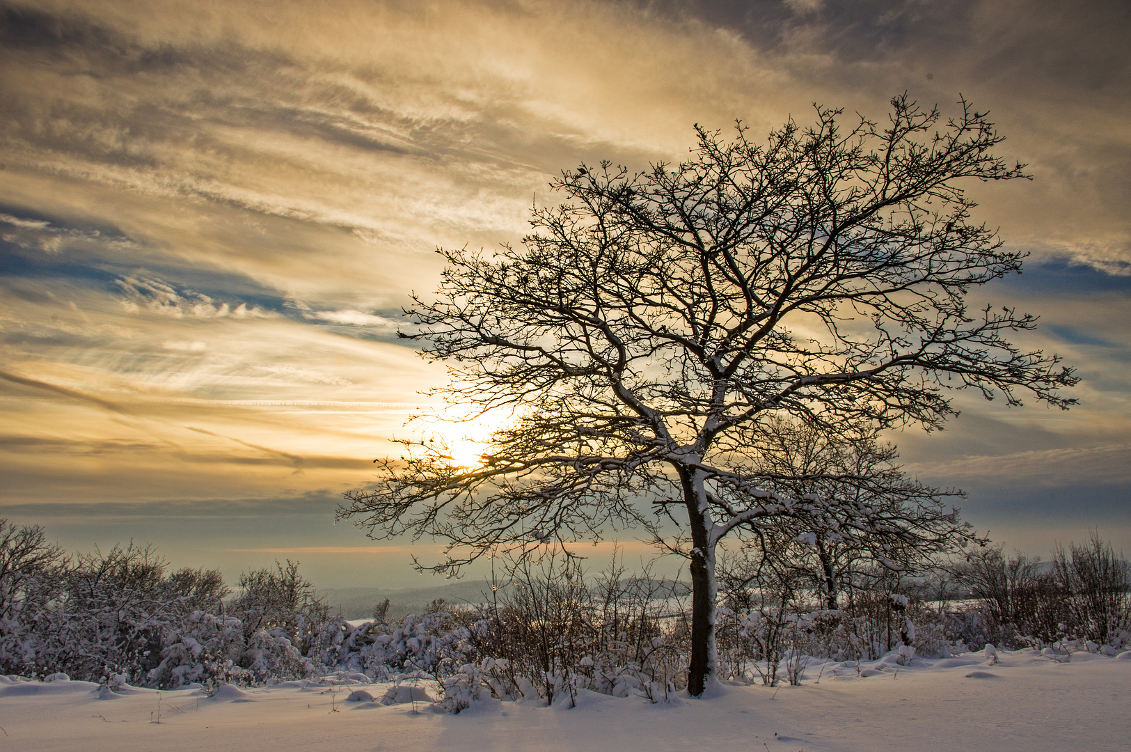 Winterlandschaft VII