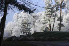 Winterlandschaften_1