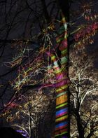Winterleuchten im Westfalenpark 1