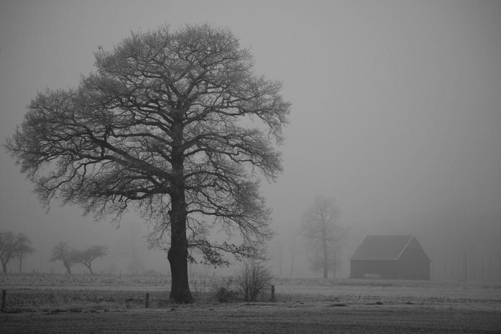 winterlich ...