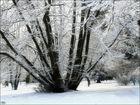 Winterlich angezogen...