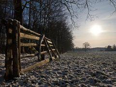 Winterlich (t)