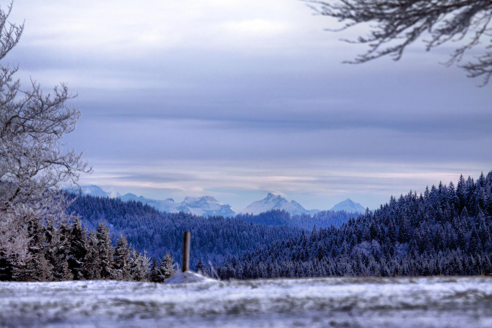 Winterliche Abendstimmung auf dem Stohren mit Alpenfernsicht (150 km)