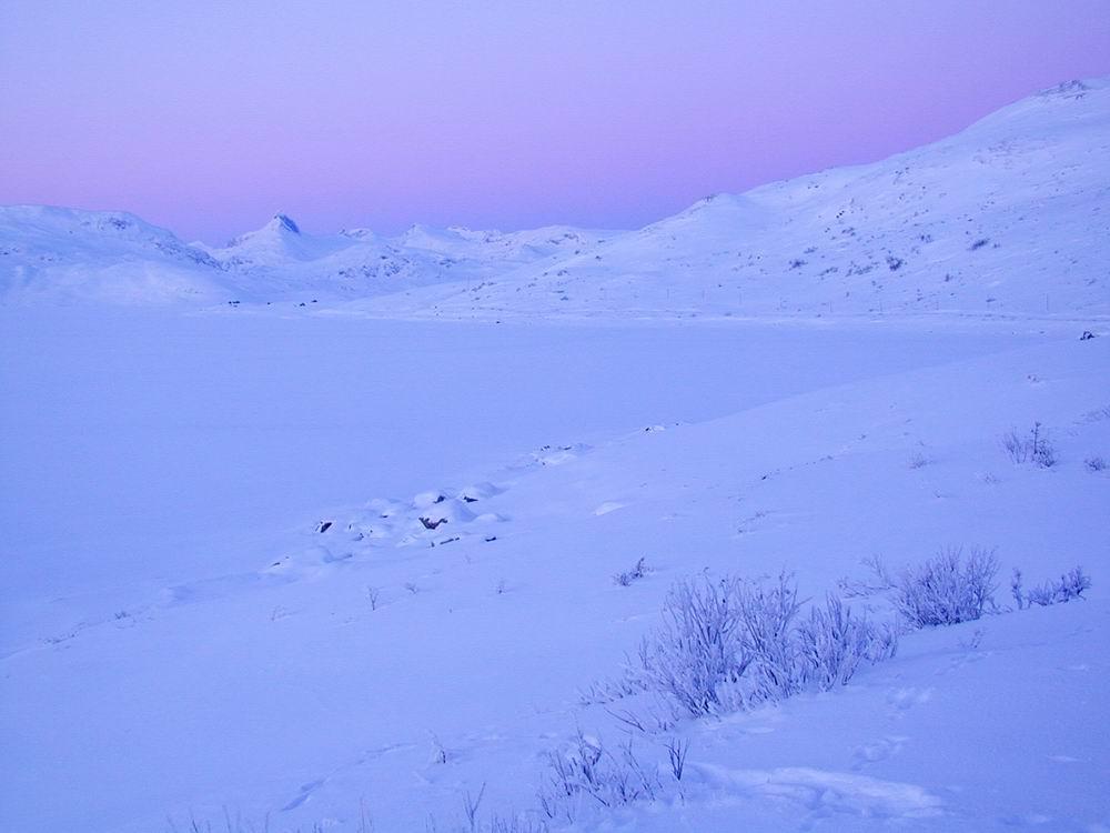 Winterliche Dämmerung - Tyinsee in Pastelltönen