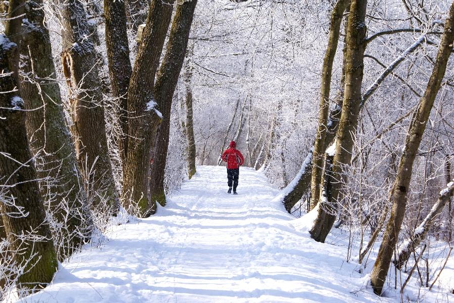 winterliche Fortbewegung