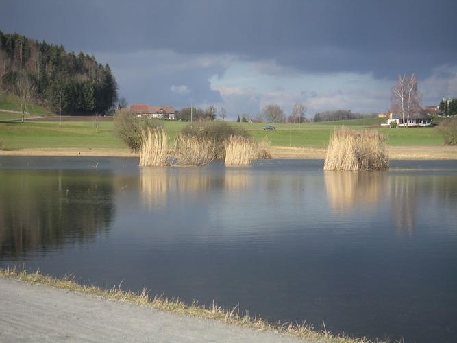 winterliche Gewitterstimmung trotz Sonnenschein (durch Spiegelung der dunklen Wolken im See)