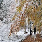 Winterliche Herbstwanderung