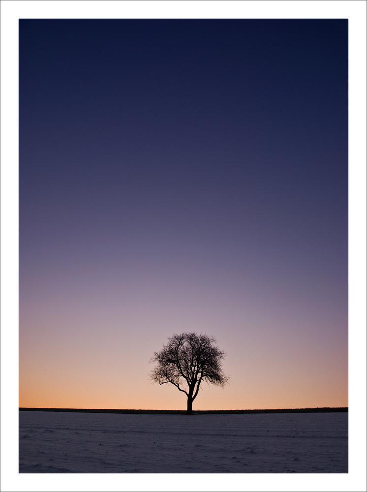 ...Winterliche-Impression 2...