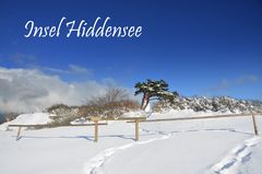 Winterliche Insel 2021