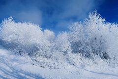 Winterliche-Landschaft