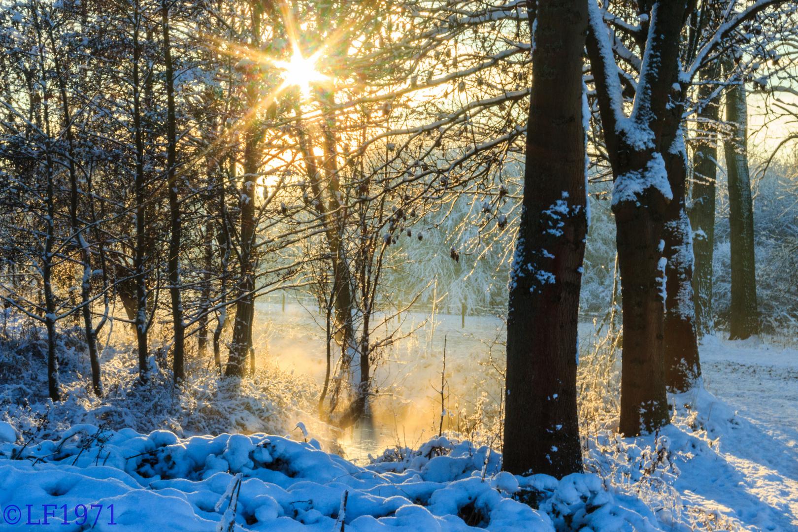 winterliche Nachmittagssonne