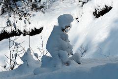 Winterliche Schlittenfahrt! - En luge dans la forêt...