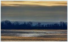 Winterliche Stille an der Elbe bei Hamburg (Taschenknipse: Sony CyberShot H20)
