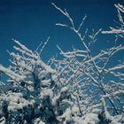 Winterliche Stimmung (2)