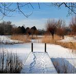Winterliche Teichlandschaft