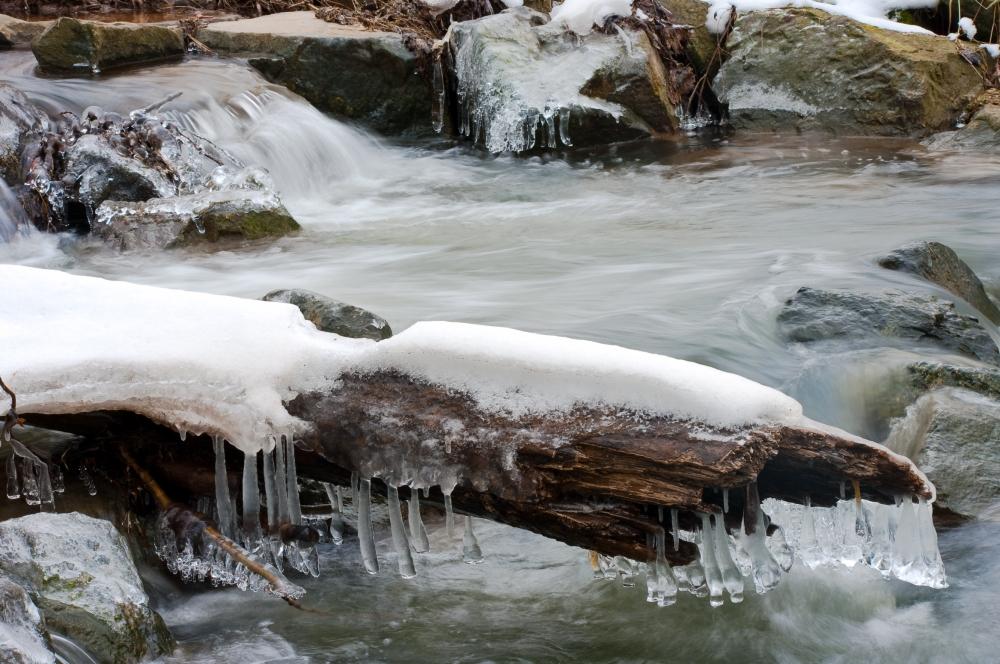 Winterlicher Bach mit Schnupfen