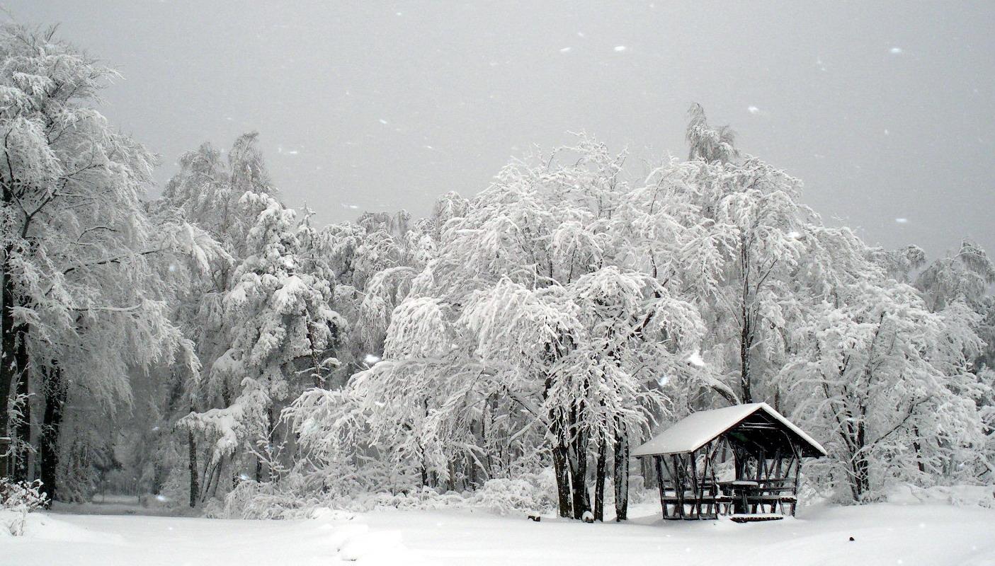 Winterlicher Baumschmuck