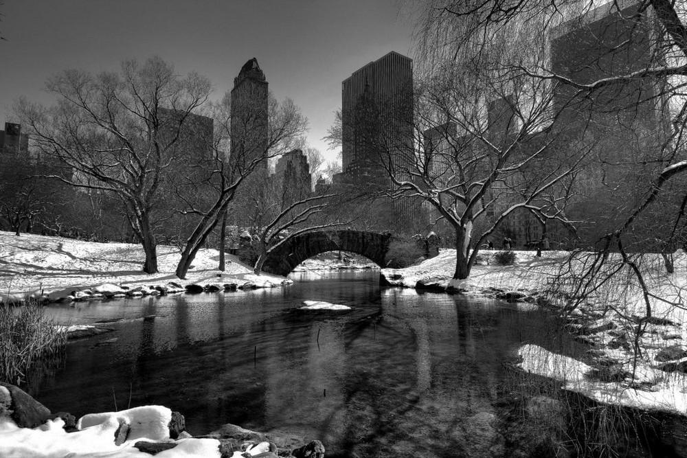 Winterlicher Central Park